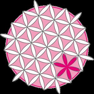 EVE_Logo_nur-Bild